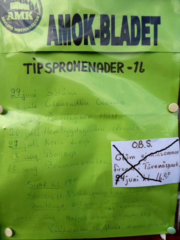 tipspromenad_2016