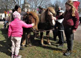 Hästarna var populära bland barnen